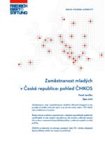 Zaměstnanost mladých v České Republice